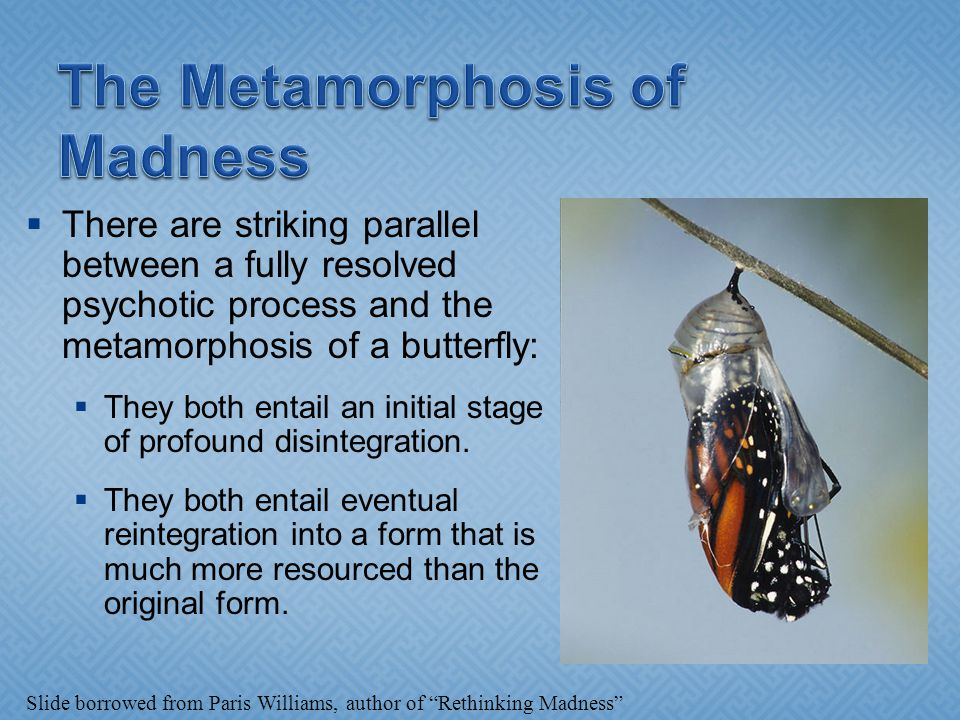  There are striking parallel between a fully resolved psychotic process and the metamorphosis of a butterfly:  They both entail an initial stage of profound disintegration.