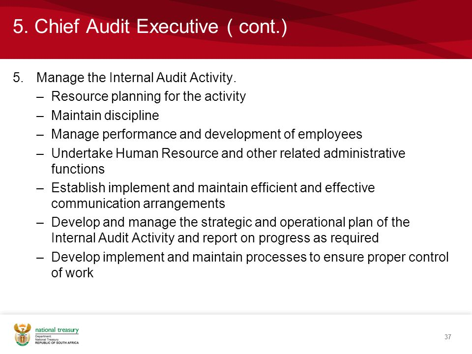 5. Chief Audit Executive ( cont.) 5.Manage the Internal Audit Activity.