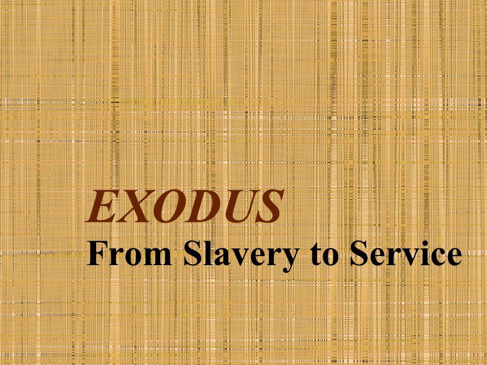 5. The Plagues God's Battle with Pharaoh (Exodus 5:1—10:29)
