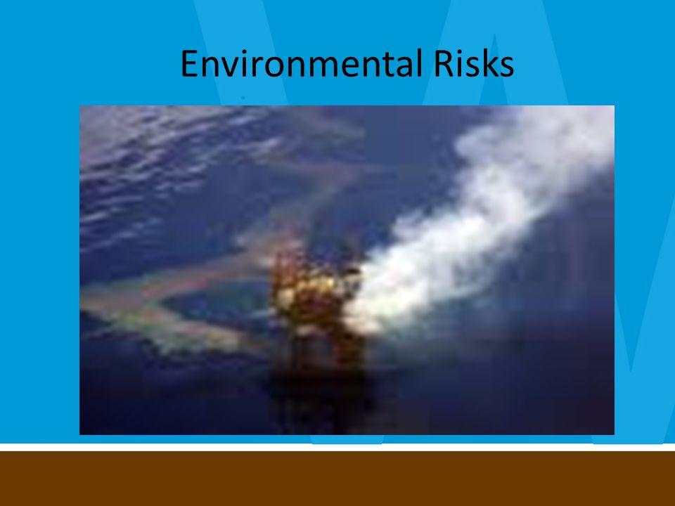 Environmental Risks