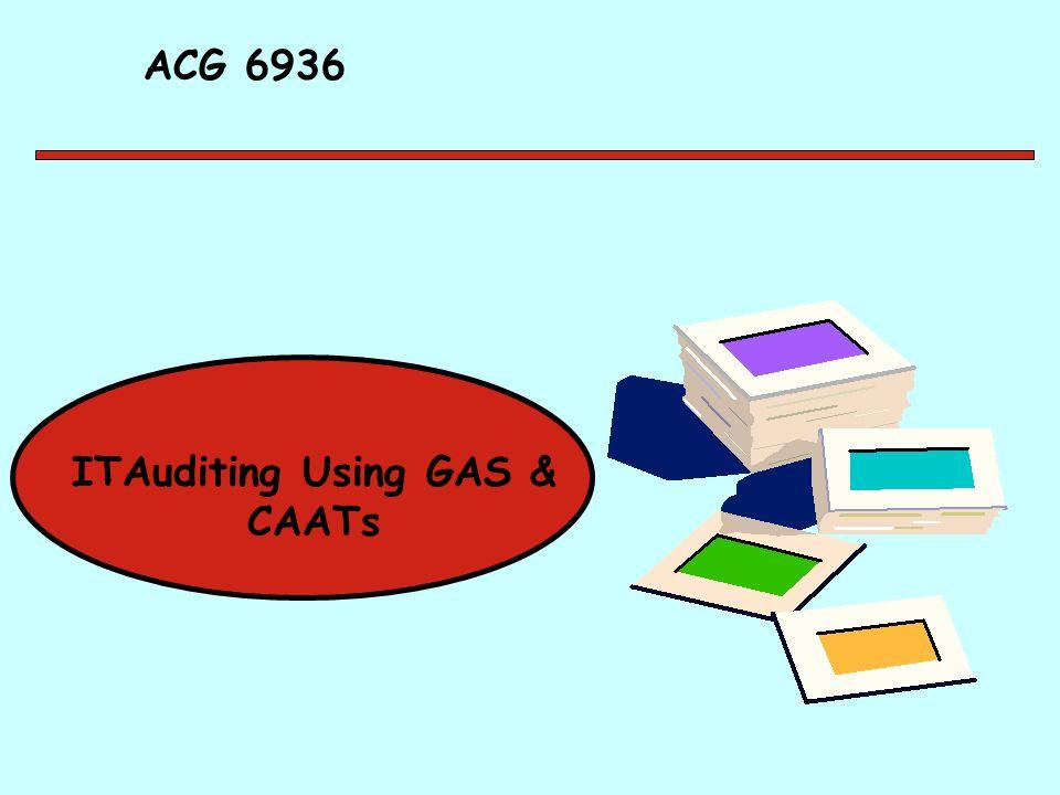 ACG 6936 ITAuditing Using GAS & CAATs