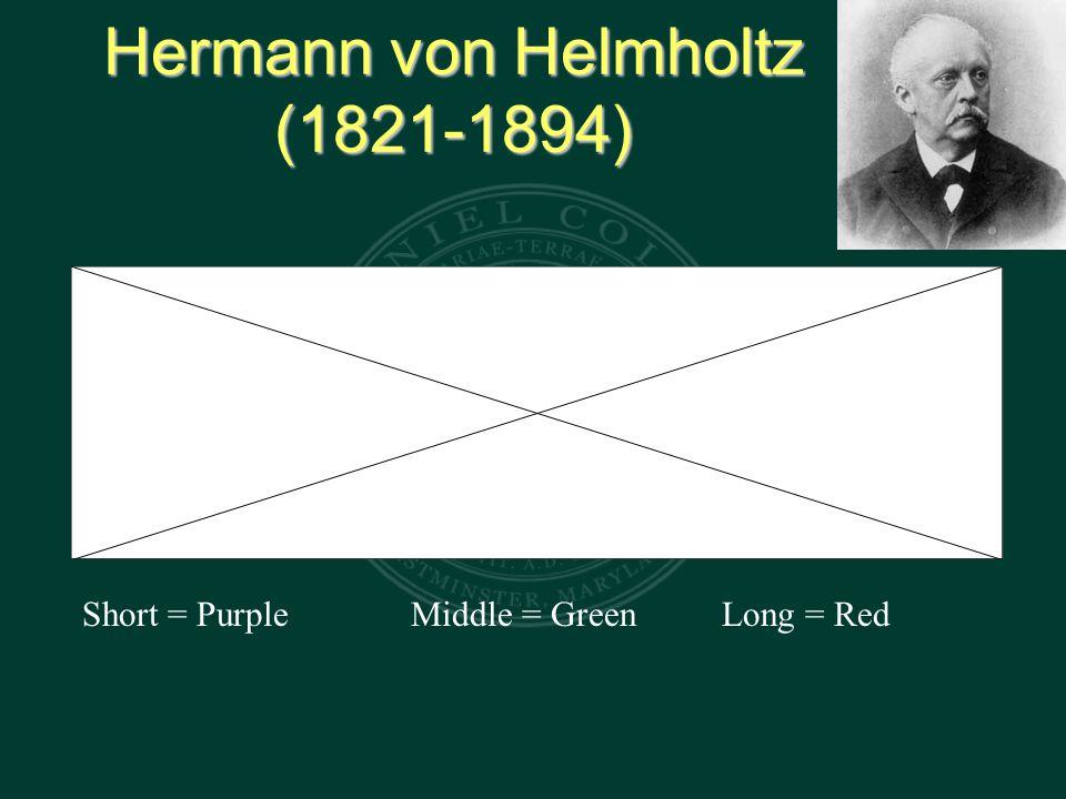 Hermann von Helmholtz (1821-1894) Short = Purple Middle = GreenLong = Red