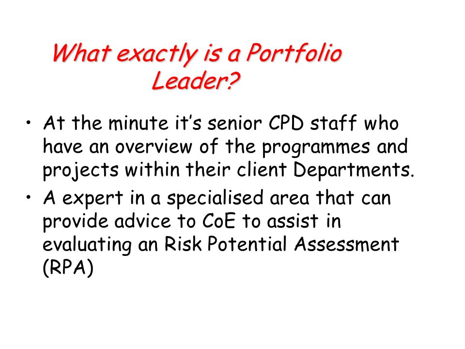 What exactly is a Portfolio Leader.