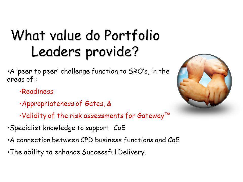 What value do Portfolio Leaders provide .
