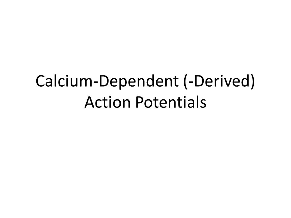 Calcium-Dependent (-Derived) Action Potentials
