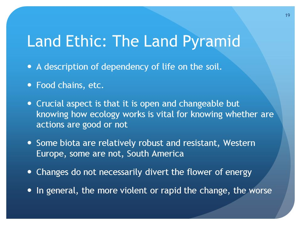 19 Land Ethic: The Land Pyramid A description of dependency of life on the soil.