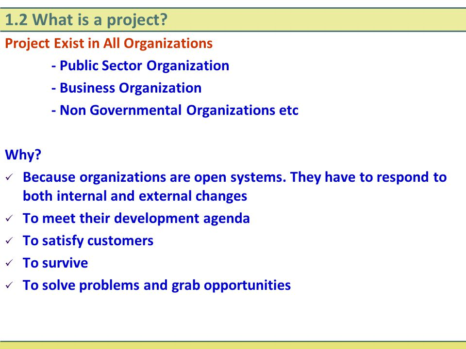1.2 What is a project? Project Exist in All Organizations - Public Sector Organization - Business Organization - Non Governmental Organizations etc Wh
