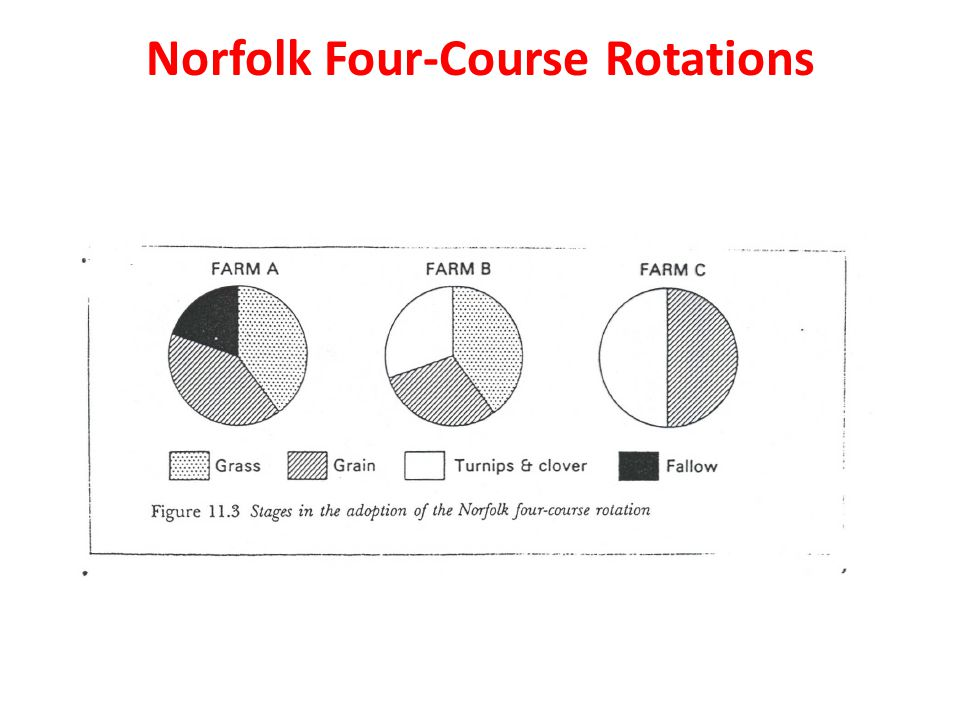 Norfolk Four-Course Rotations