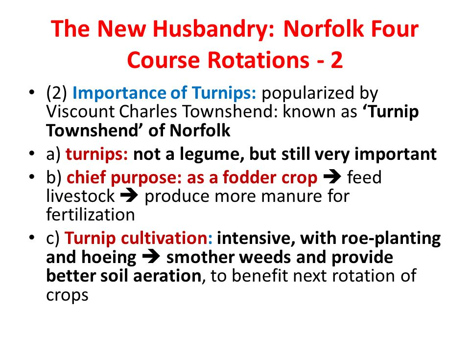 The New Husbandry: Norfolk Four Course Rotations - 2 (2) Importance of Turnips: popularized by Viscount Charles Townshend: known as 'Turnip Townshend' of Norfolk a) turnips: not a legume, but still very important b) chief purpose: as a fodder crop  feed livestock  produce more manure for fertilization c) Turnip cultivation: intensive, with roe-planting and hoeing  smother weeds and provide better soil aeration, to benefit next rotation of crops