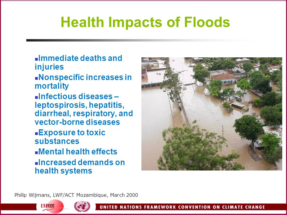 Health Impacts of Floods Immediate deaths and injuries Nonspecific increases in mortality Infectious diseases – leptospirosis, hepatitis, diarrheal, respiratory, and vector-borne diseases Exposure to toxic substances Mental health effects Increased demands on health systems Philip Wijmans, LWF/ACT Mozambique, March 2000