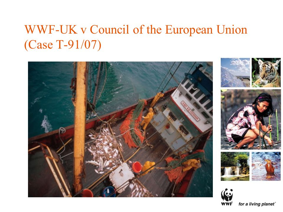 WWF-UK v Council of the European Union (Case T-91/07)