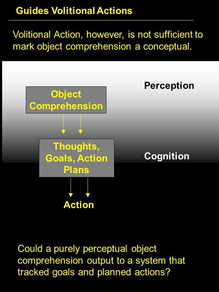 Volitional Action, however, is not sufficient to mark object comprehension a conceptual.