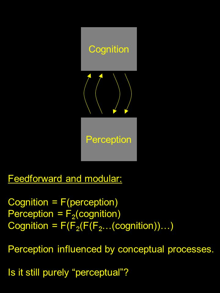 Perception Cognition Feedforward and modular: Cognition = F(perception) Perception = F 2 (cognition) Cognition = F(F 2 (F(F 2 …(cognition))…) Perception influenced by conceptual processes.