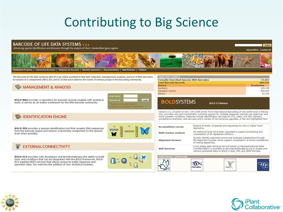 Contributing to Big Science
