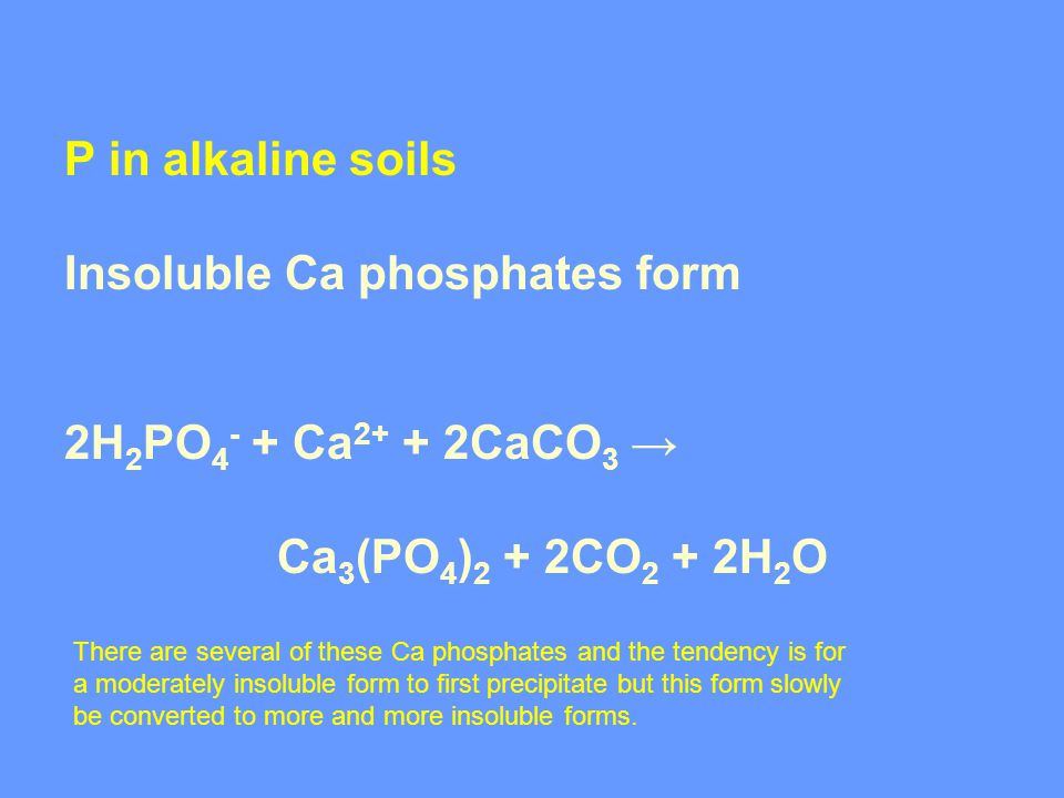 P in alkaline soils Insoluble Ca phosphates form 2H 2 PO 4 - + Ca 2+ + 2CaCO 3 → Ca 3 (PO 4 ) 2 + 2CO 2 + 2H 2 O There are several of these Ca phosphates and the tendency is for a moderately insoluble form to first precipitate but this form slowly be converted to more and more insoluble forms.