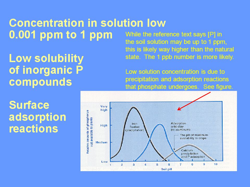 While the reference text says [P] in the soil solution may be up to 1 ppm, this is likely way higher than the natural state.