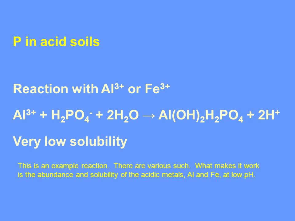 P in acid soils Reaction with Al 3+ or Fe 3+ Al 3+ + H 2 PO 4 - + 2H 2 O → Al(OH) 2 H 2 PO 4 + 2H + Very low solubility This is an example reaction.