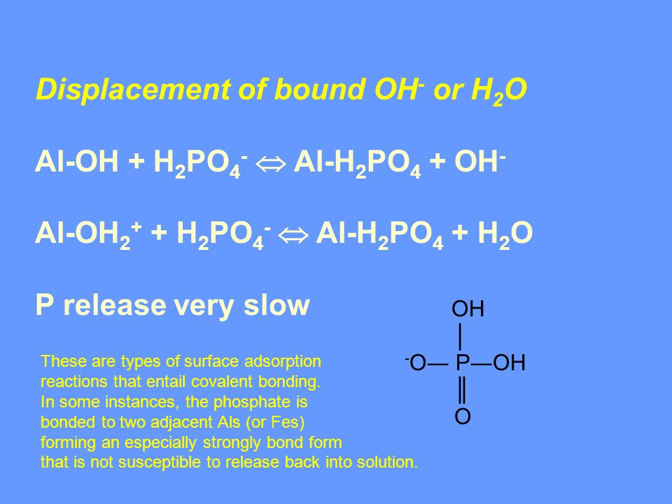 Displacement of bound OH - or H 2 O Al-OH + H 2 PO 4 -  Al-H 2 PO 4 + OH - Al-OH 2 + + H 2 PO 4 -  Al-H 2 PO 4 + H 2 O P release very slow OH │ - O― P―OH ║ O These are types of surface adsorption reactions that entail covalent bonding.