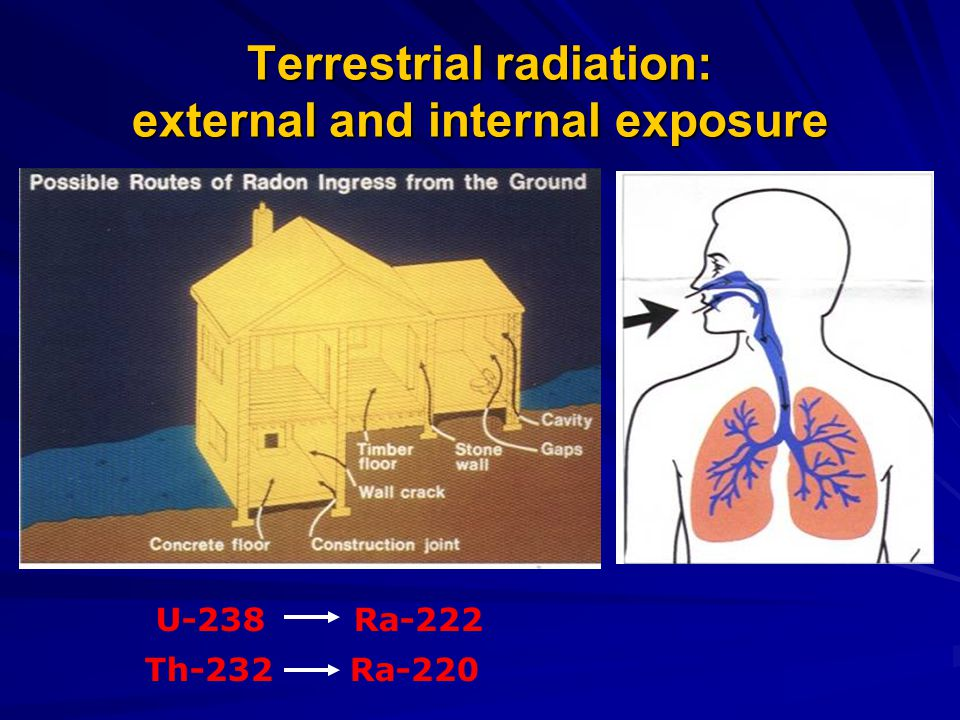 Terrestrial radiation: external and internal exposure U-238 Ra-222 Th-232 Ra-220