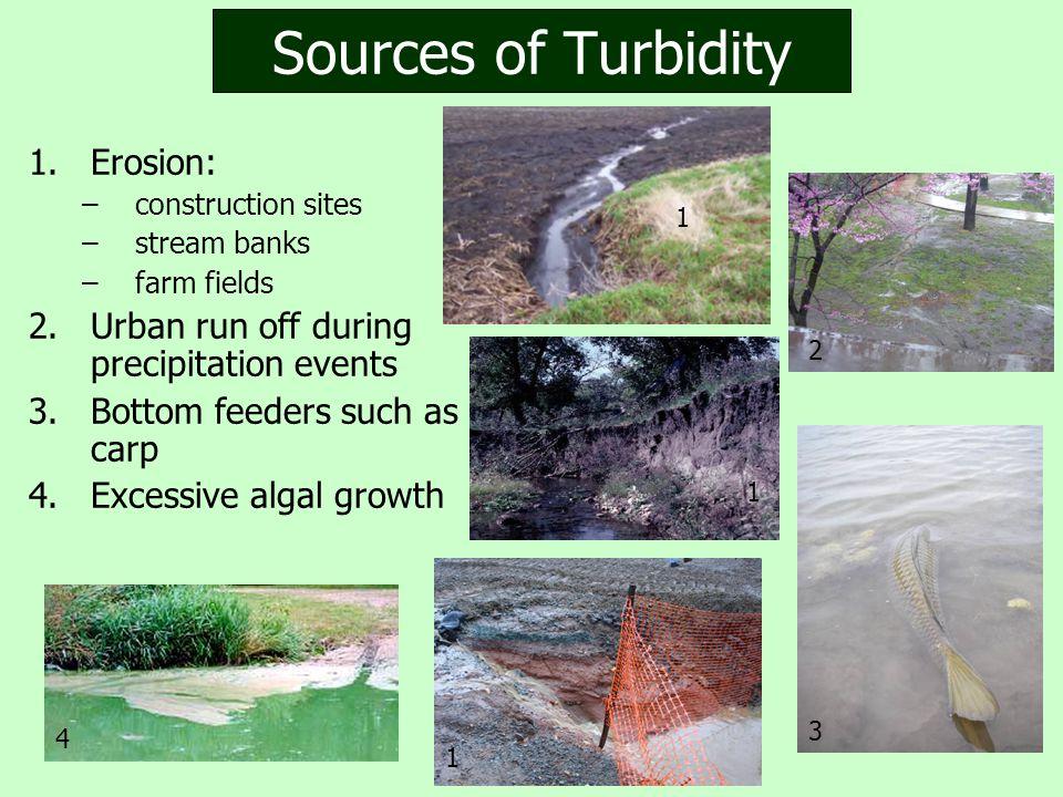 Sources of Turbidity 1.Erosion: –construction sites –stream banks –farm fields 2.Urban run off during precipitation events 3.Bottom feeders such as carp 4.Excessive algal growth 4 3 1 1 2 1