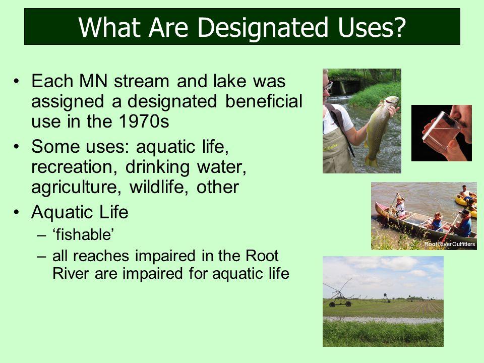 What Are Designated Uses.