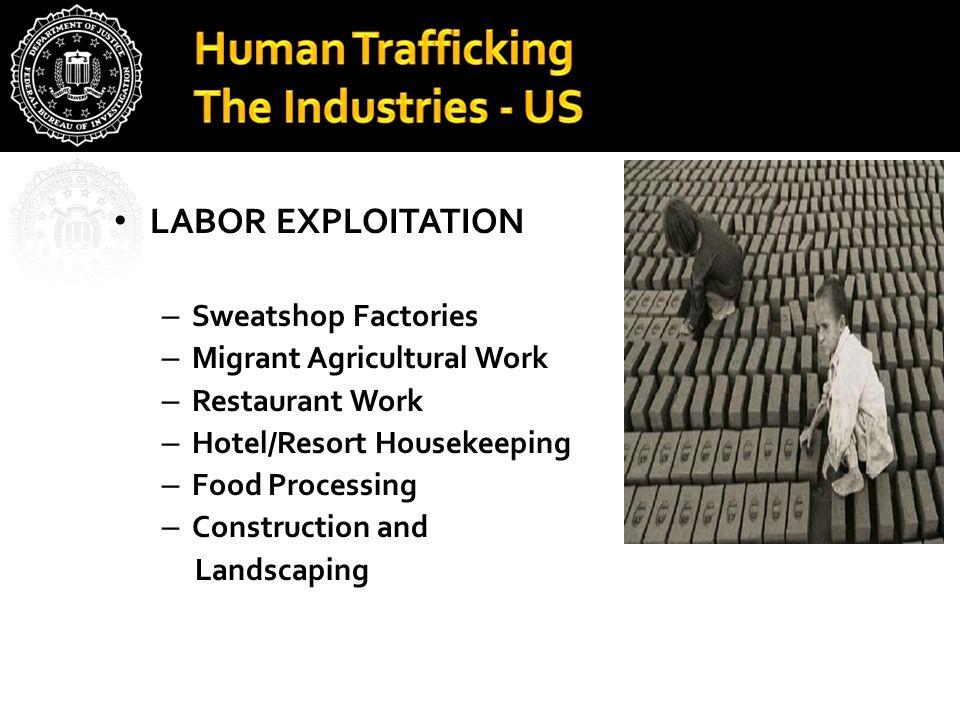 Human Trafficking The Industries - US LABOR EXPLOITATION – Sweatshop Factories – Migrant Agricultural Work – Restaurant Work – Hotel/Resort Housekeepi