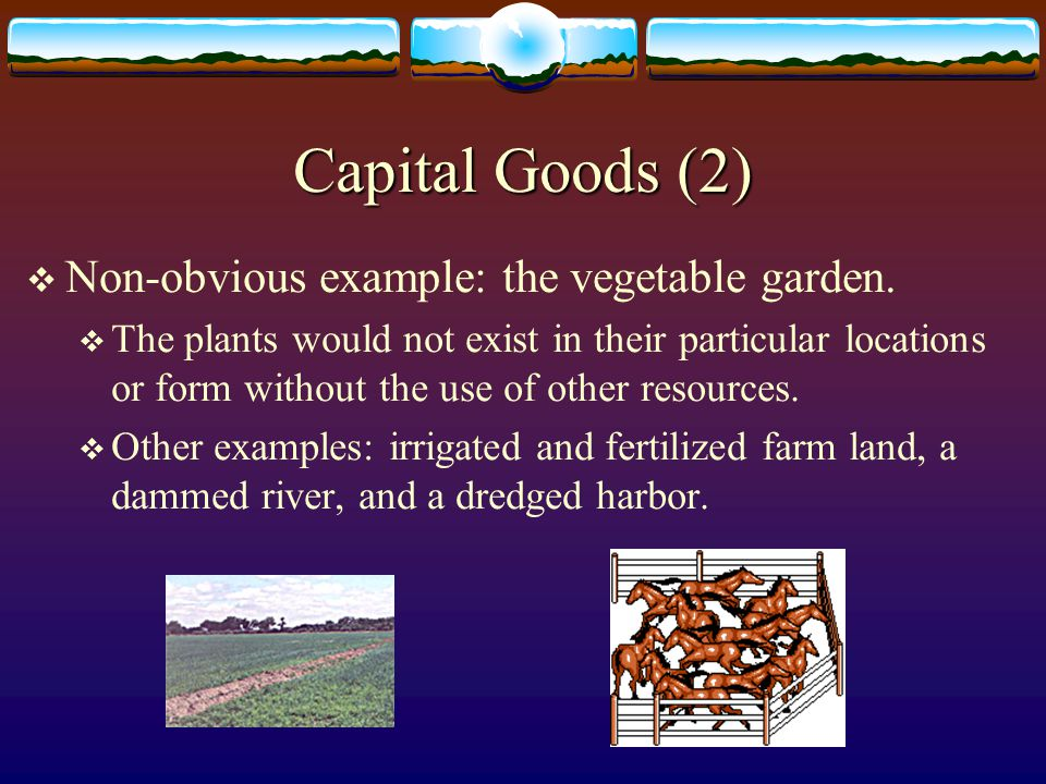 Capital Goods (1)  Definition: human-made material resources.