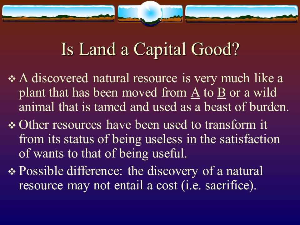 Capital Goods (2)  Non-obvious example: the vegetable garden.