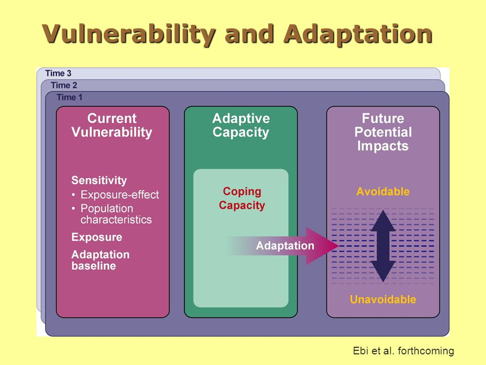 Vulnerability and Adaptation Ebi et al. forthcoming
