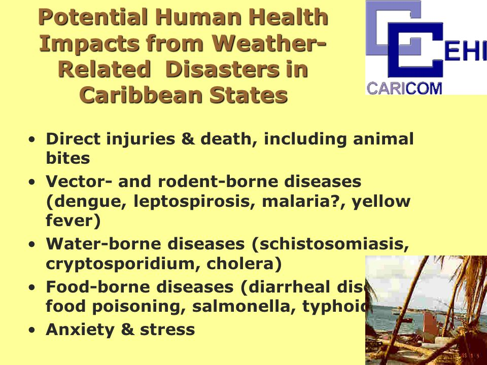 Potential Human Health Impacts from Weather- Related Disasters in Caribbean States Direct injuries & death, including animal bites Vector- and rodent-borne diseases (dengue, leptospirosis, malaria , yellow fever) Water-borne diseases (schistosomiasis, cryptosporidium, cholera) Food-borne diseases (diarrheal diseases, food poisoning, salmonella, typhoid) Anxiety & stress