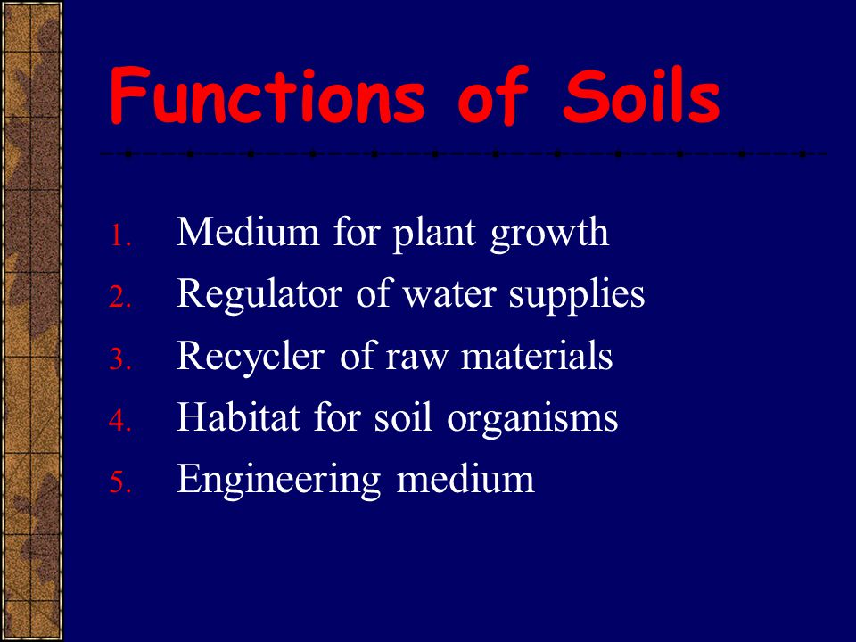 Functions of Soils 1. Medium for plant growth 2. Regulator of water supplies 3. Recycler of raw materials 4. Habitat for soil organisms 5. Engineering