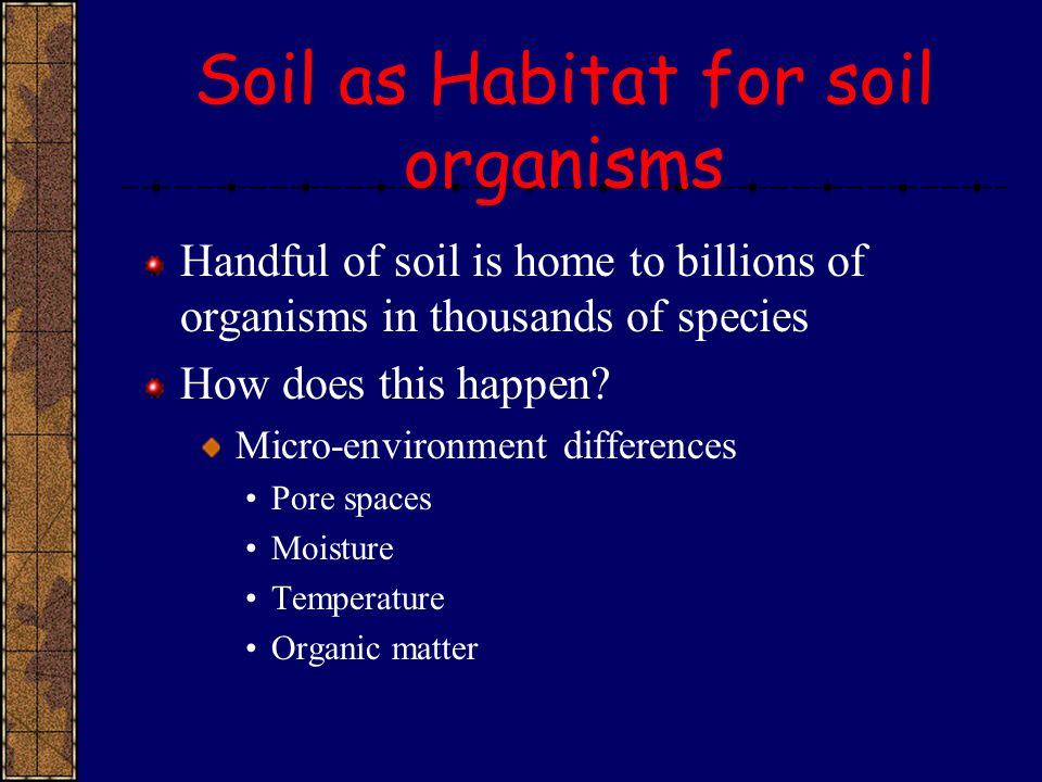 Soil as Habitat for soil organisms Handful of soil is home to billions of organisms in thousands of species How does this happen? Micro-environment di