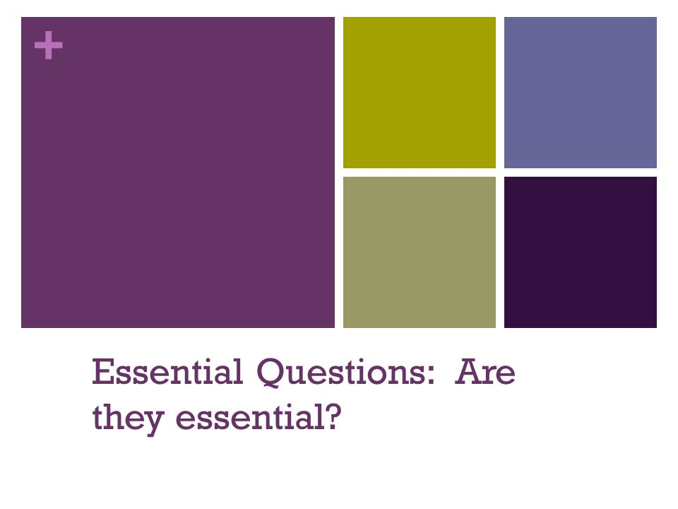 + Essential Questions: Are they essential?