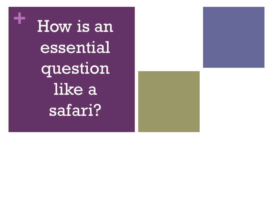 + How is an essential question like a safari