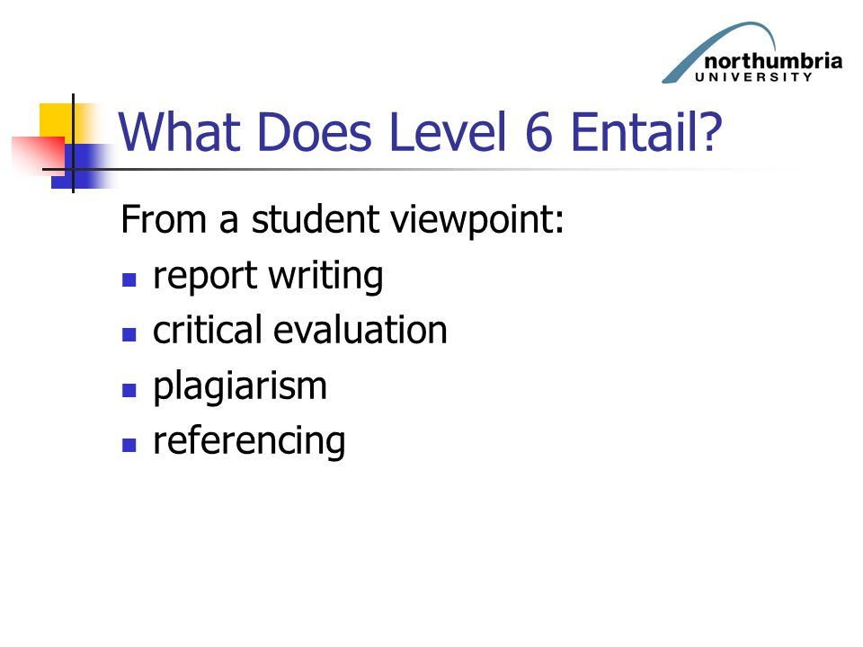 What Does Level 6 Entail? From a student viewpoint: report writing critical evaluation plagiarism referencing