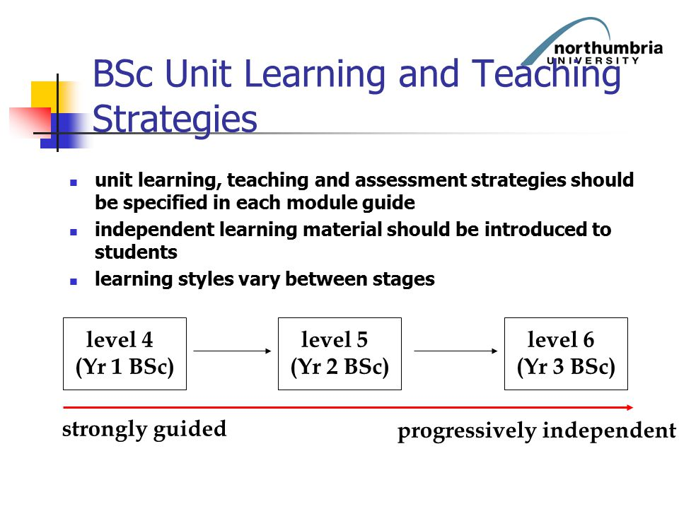 BSc Unit Learning and Teaching Strategies unit learning, teaching and assessment strategies should be specified in each module guide independent learn
