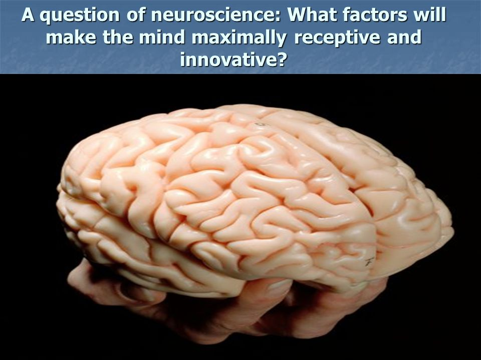 A question of neuroscience: What factors will make the mind maximally receptive and innovative?
