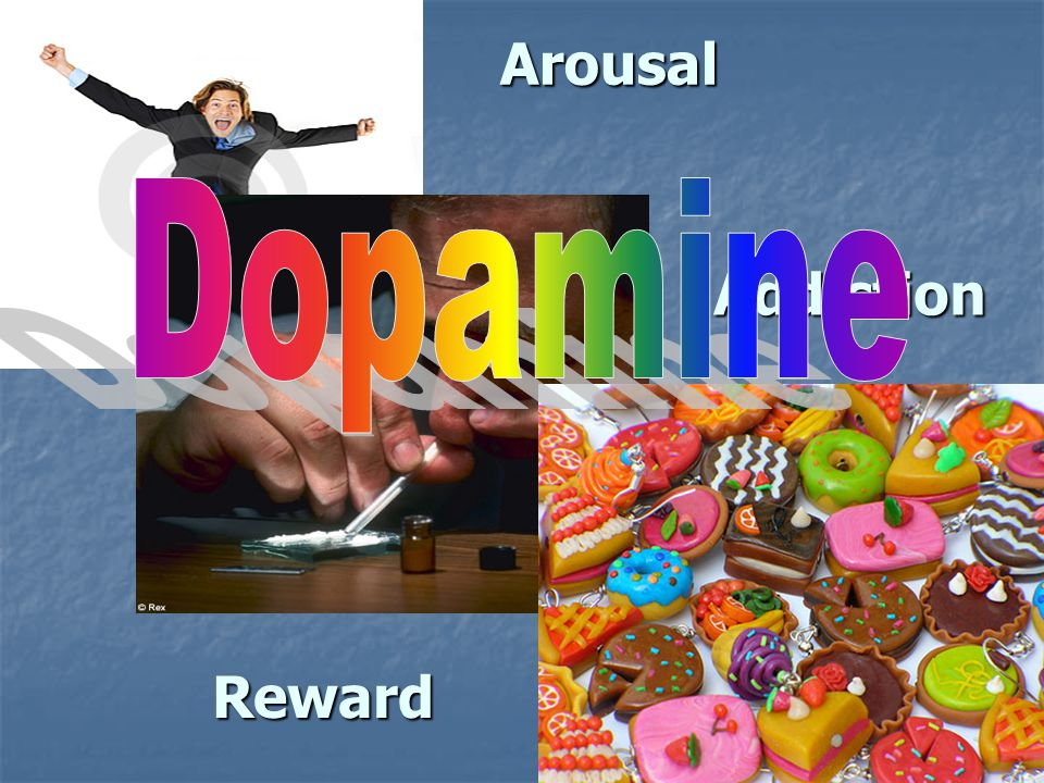 Arousal Addiction Reward