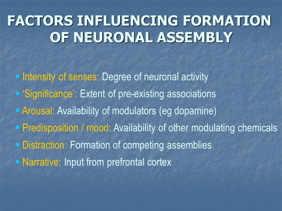 FACTORS INFLUENCING FORMATION OF NEURONAL ASSEMBLY  Intensity of senses: Degree of neuronal activity  'Significance': Extent of pre-existing associa