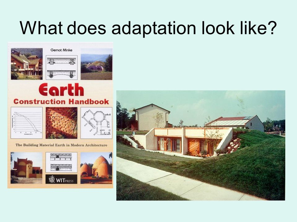 What does adaptation look like