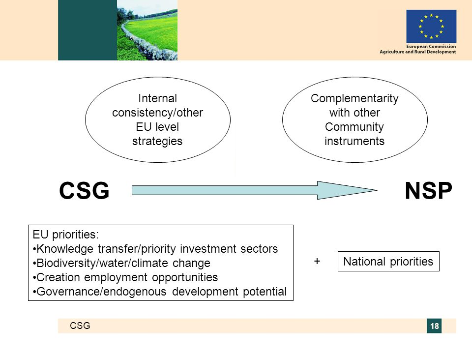 CSG 18 NSPCSG Internal consistency/other EU level strategies Complementarity with other Community instruments EU priorities: Knowledge transfer/priority investment sectors Biodiversity/water/climate change Creation employment opportunities Governance/endogenous development potential National priorities +