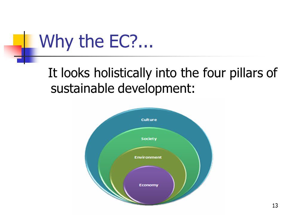 13 Why the EC ... It looks holistically into the four pillars of sustainable development: