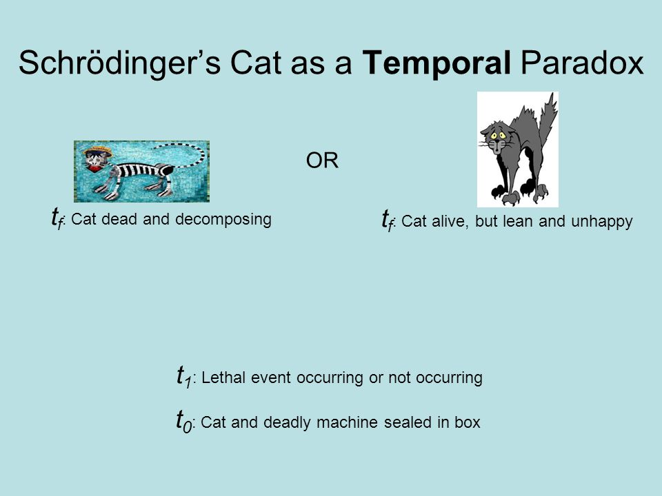 Quantum Temporal Peculiarities Delayed Choice HBT Experiment Schrödinger's cat