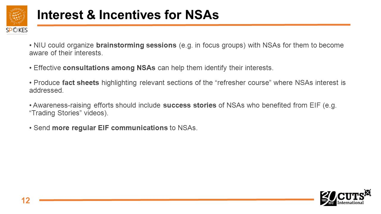 12 Interest & Incentives for NSAs NIU could organize brainstorming sessions (e.g. in focus groups) with NSAs for them to become aware of their interes