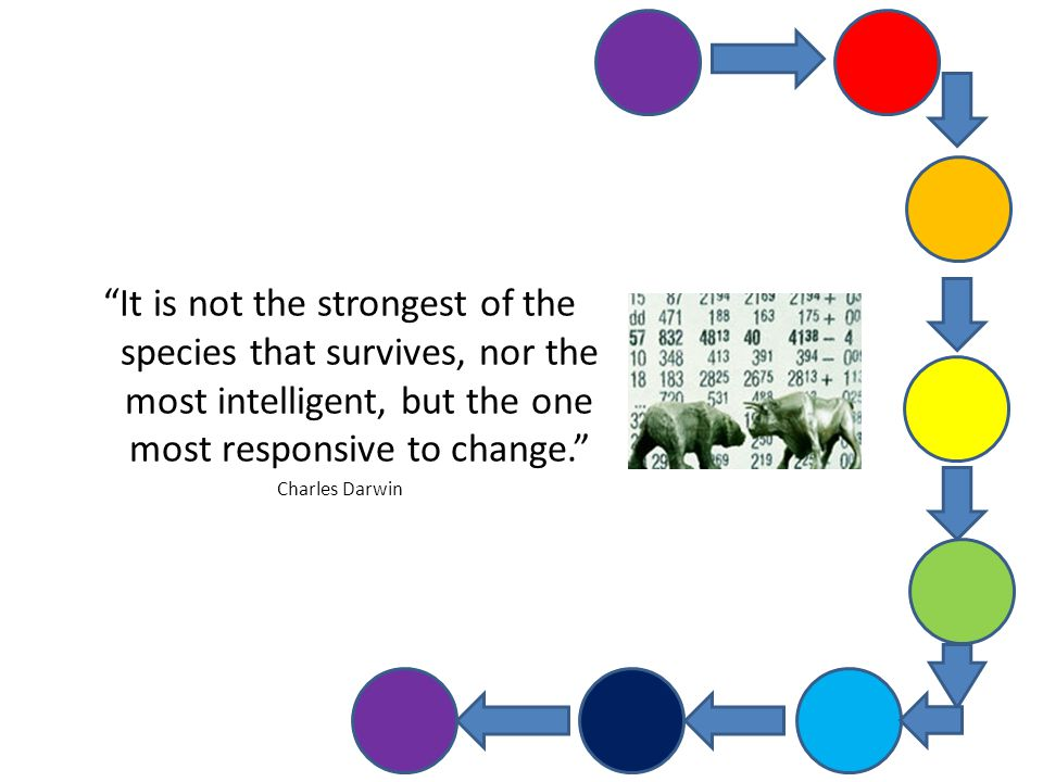 """It is not the strongest of the species that survives, nor the most intelligent, but the one most responsive to change."" Charles Darwin"