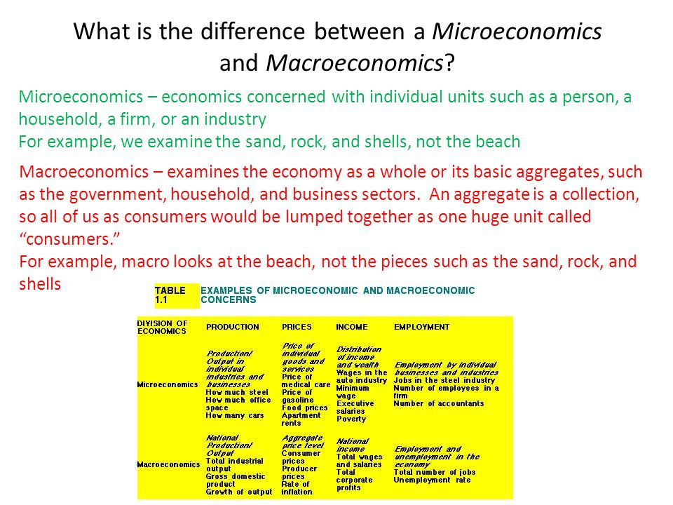 Microeconomics – economics concerned with individual units such as a person, a household, a firm, or an industry For example, we examine the sand, rock, and shells, not the beach Macroeconomics – examines the economy as a whole or its basic aggregates, such as the government, household, and business sectors.