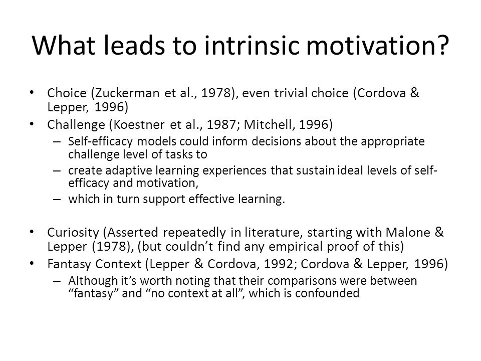What leads to intrinsic motivation.