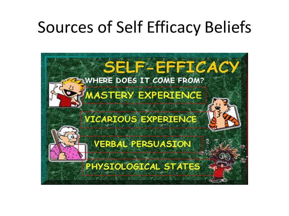 Sources of Self Efficacy Beliefs