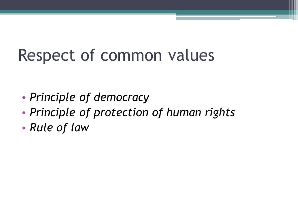 Respect of common values Principle of democracy Principle of protection of human rights Rule of law
