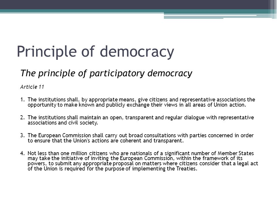 Principle of democracy The principle of participatory democracy Article 11 1.The institutions shall, by appropriate means, give citizens and represent